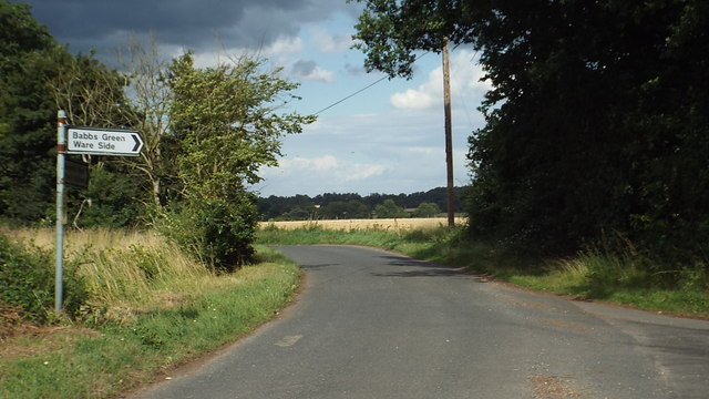 Country lanes near Ware