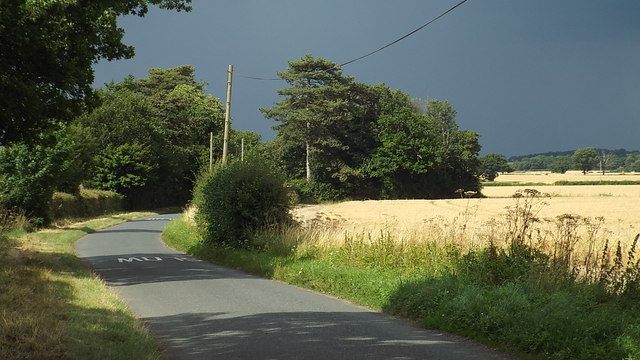 Country lane near Ware