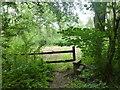 SK9930 : Stile to Scotland Lane by Bob Harvey