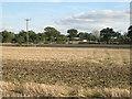 SP0869 : Stubble field, Pink Green by Robin Stott