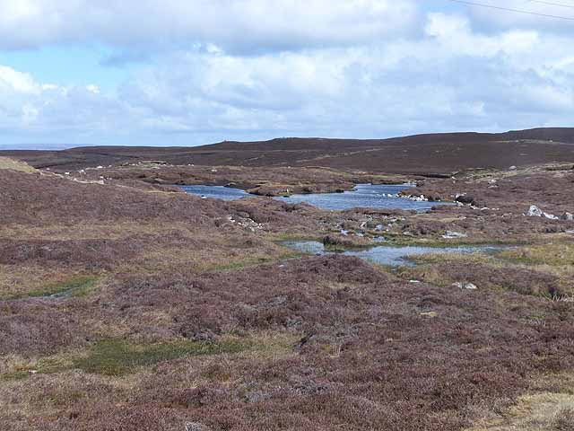 Lochans on the road across Whalsay