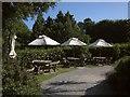 SX9050 : Outdoor tables at Coleton Fishacre by Derek Harper