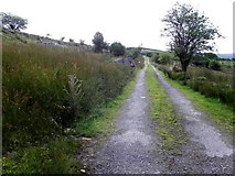 H0727 : Lane, Eshveagh by Kenneth  Allen
