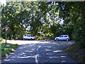 TM3491 : Tunneys Lane, Ditchingham by Geographer