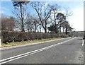 NX0979 : A77 at Glenapp by Ann Cook
