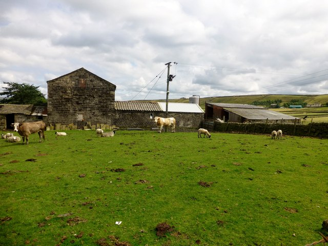 Lower Rough Head Farm
