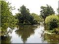 TM0733 : River Stour, View from Flatford Bridge by David Dixon