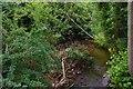 SO8475 : Hoo Brook, Spennells, Kidderminster by P L Chadwick