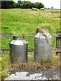 SK1862 : Hairy milk churns by Neil Theasby