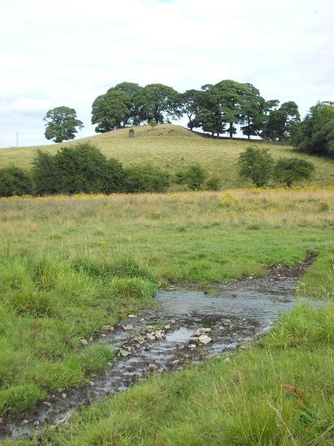 Near Hopping Farm, Middleton