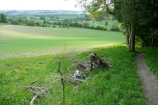 Towards the Hambleden valley