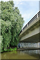 SK5639 : Willow and bridge by David Lally