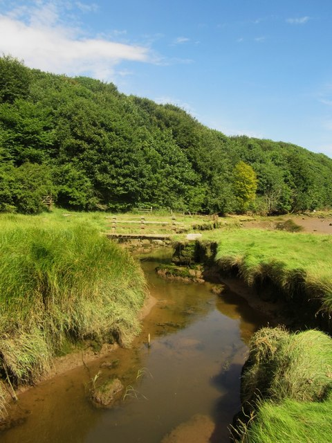 The Common Burn near its confluence with the River Tweed