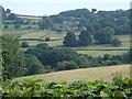 SK2380 : Derwent valley fields near Leadmill by Andrew Hill
