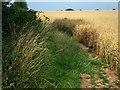 SU6513 : Wayfarer's Walk footpath by Chris Gunns