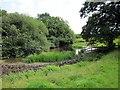 SJ5248 : Pond at Bickleywood by Jeff Buck