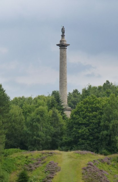 The Column to Liberty, Gibside