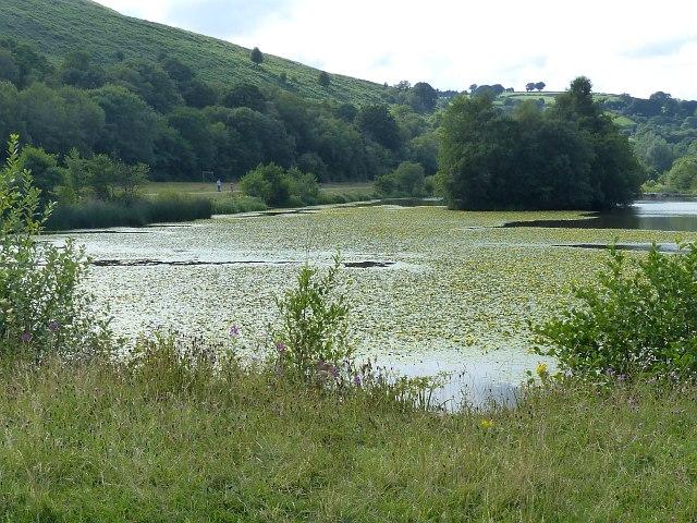 View across Parc Cwm Darran Lake (2)