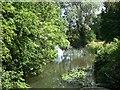 TL7745 : River Stour, Clare by David Dixon