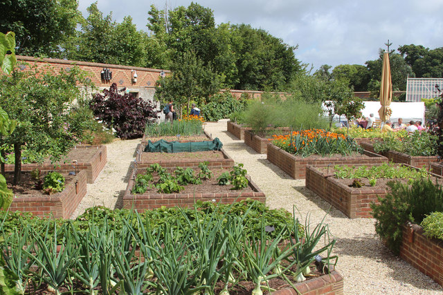 Raised beds in the walled garden