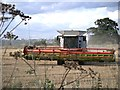 TM1243 : Claas Lexion 760 Combine Harvester at Poplar Farm by David Dixon