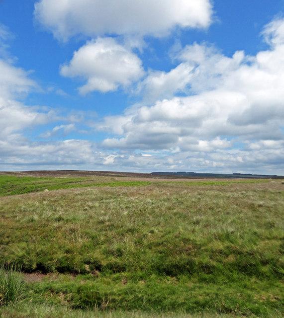 Blue Skies White Clouds Levisham Moor