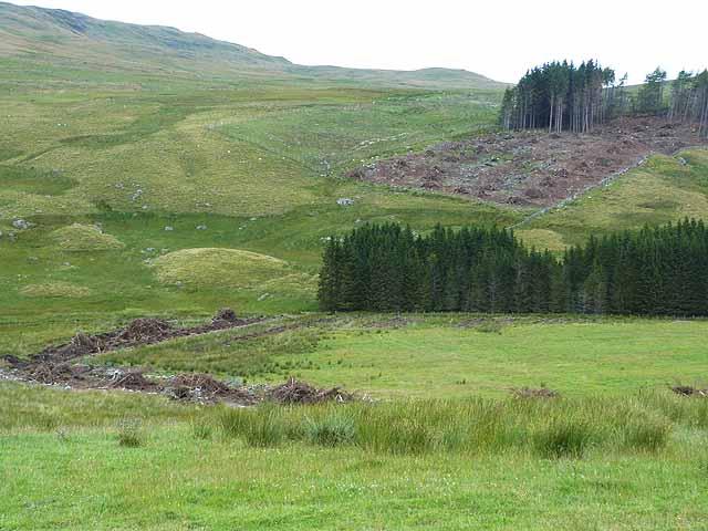 Deforestation near Balloch