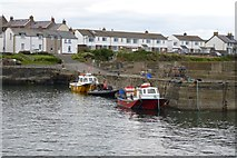 NU2520 : Boats in Craster Harbour by DS Pugh
