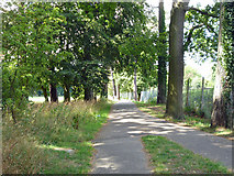 TQ2636 : Path beside the railway, Goffs Park by Robin Webster