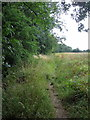 TL0742 : Path along the edge of Wilstead Wood by Philip Jeffrey
