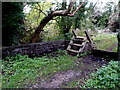 ST6983 : Wooden steps to the Frome Valley Walkway, Yate by Jaggery