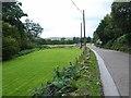 NO5578 : Lawn at Greenburn Haugh. by Oliver Dixon