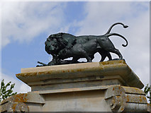 SK8932 : Lions on the forecourt gateway by Alan Murray-Rust