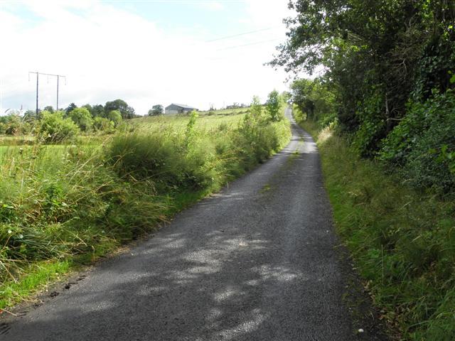 Road at Gubrawully