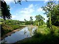 TQ6432 : Pond at Little Pell Farm by Des Blenkinsopp