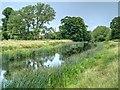 SP2556 : River Avon, Charlecote Park by David Dixon