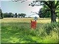 SP2556 : Public Footpath, Charlecote Park by David Dixon
