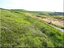 SE0511 : Footpath up to Binn Moor by Humphrey Bolton