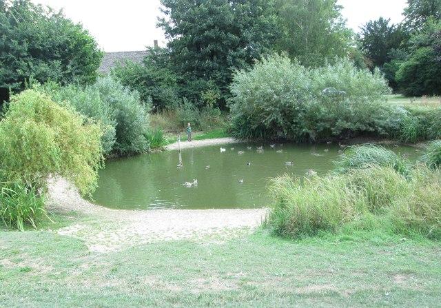 Duck Pond - off Standlake Road