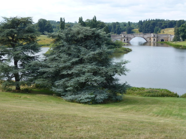 Trees and the Queen Pool, Blenheim Palace