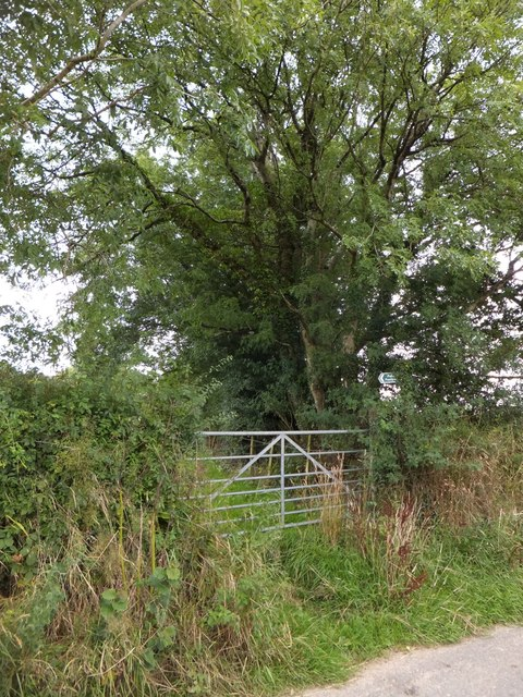 A little-used gateway for a footpath to Battens Farm