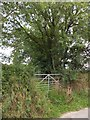 SX4566 : A little-used gateway for a footpath to Battens Farm by David Smith