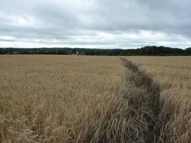 Path to Bradley Park Farm North