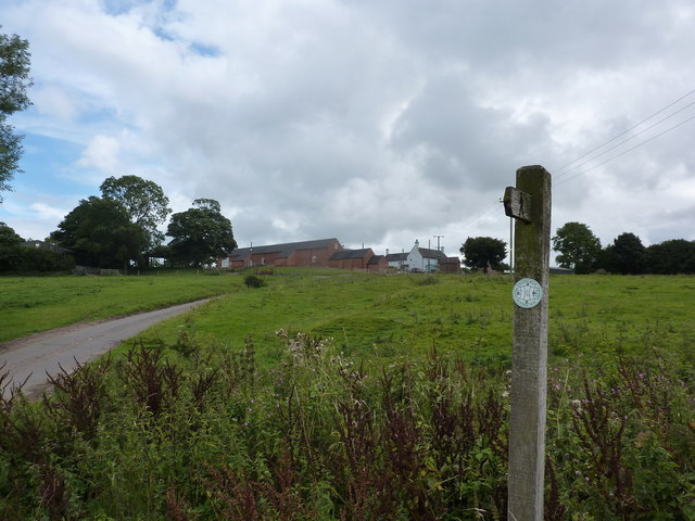 Looking up the slope to Firs Farm