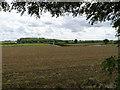 SK8931 : Fields near Stroxton by Alan Murray-Rust