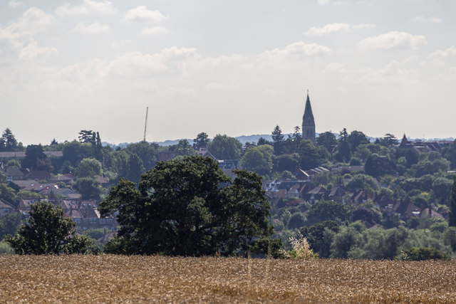 Farmland, Trent Park, Cockfosters, Hertfordshire by Christine Matthews