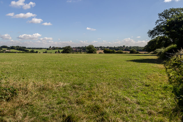 Farmland, Vicarage Farm, Enfield, Middlesex by Christine Matthews