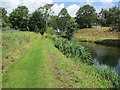 TQ0718 : Path adjacent to pond by Peter Holmes