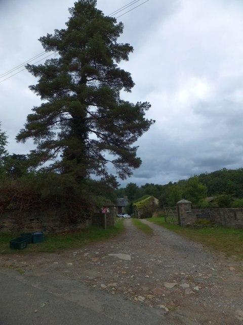 Parsonage Farm, near Bere Ferrers