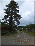 SX4563 : Parsonage Farm, near Bere Ferrers by David Smith